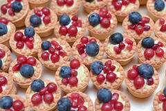 Mini tarts with vanilla cream , blueberries and redcurrants Royalty Free Stock Image