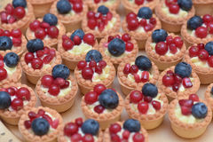 Mini tarts with vanilla cream, blueberries and redcurrants Stock Images