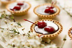 Free Mini Tarts With Chocolate And Cherries Decorated Cherry Blossom Royalty Free Stock Photography - 69680857