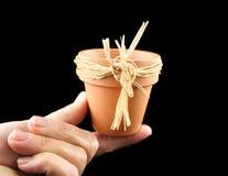 Mini Terracotta Pot Stock Images
