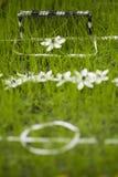 Mini terrain de football de fleur Photos stock