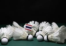 Mini Thailand flag stick on the heap of used shuttlecocks on green floor of Badminton court. With dark black background stock image