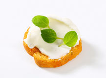 Mini toast with cream cheese Stock Photography