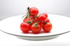Mini tomato. Studio shot of baby tomato in a white dish Royalty Free Stock Photo
