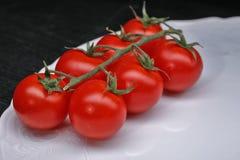 Mini tomato Stock Images