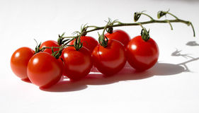 MINI TOMATOES Royalty Free Stock Images