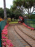 Mini train engine at Dole Plantation Royalty Free Stock Photography