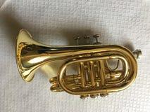 Mini trompette classique, sur le fond blanc photos stock