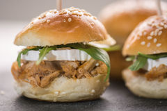 Mini tuńczyków hamburgery i biały ser tło z ostrości Obrazy Royalty Free