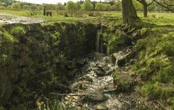Mini- vattenfall arkivbild