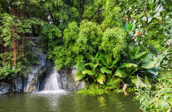 Mini- vattenfall Arkivbilder