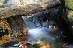 Mini- vattenfall Fotografering för Bildbyråer