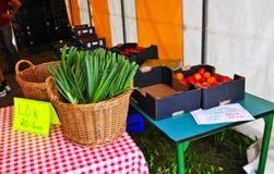 Mini Vegetable Market Royaltyfri Foto