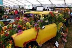 Mini voiture jaune, décorée des lis péruviens brillamment colorés images stock
