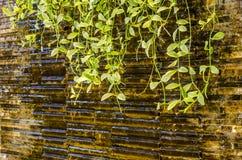 Mini water fall decoration Stock Image