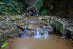 Mini Waterfall Stockbilder