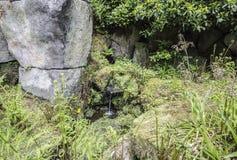 Mini waterfall in garden Stock Photos