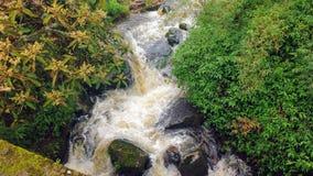 Mini Waterfall Stock Photo