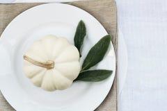 Mini White Pumpkin op een Plaat royalty-vrije stock afbeeldingen