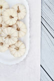 Mini White Pumpkins Stock Images