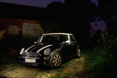 Mini in the woods Stock Images