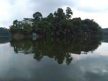 Mini wyspa W jeziorze fotografia stock