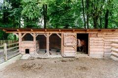 Mini ZOO avec les écuries, les chevaux de grange et le poulet à la maison Photographie stock libre de droits