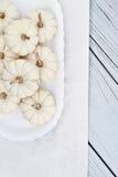 Mini zucche bianche Immagini Stock