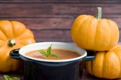 Mini zucche e minestra Fotografia Stock Libera da Diritti