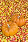 Mini zucche nel cereale di caramella Fotografie Stock