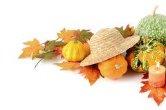 Mini zucche su fondo bianco isolato Halloween Fotografie Stock