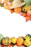 Mini zucche su fondo bianco isolato Halloween Fotografia Stock Libera da Diritti