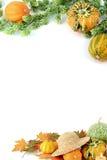 Mini zucche su fondo bianco isolato Halloween Fotografia Stock