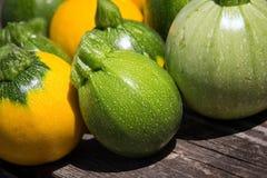 Mini- zucchini för squash för boll för zucchiniboll åtta Arkivbild