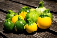 Mini- zucchini för squash för boll för zucchiniboll åtta Royaltyfri Foto