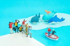 Miniatura bawi się - wielorybi dopatrywanie ojciec, syn, akwalungów nurkowie, fotografowie i mężczyzna z obuocznym, obraz stock