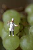 Miniatura de um cozinheiro chefe com uvas Foto de Stock Royalty Free