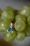Miniatura de un hombre que se sienta en las uvas Fotografía de archivo libre de regalías