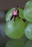 Miniatura de una mujer negra que se sienta en las uvas Fotos de archivo