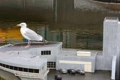 Miniatura di Madurodam con un uccello su  Immagine Stock