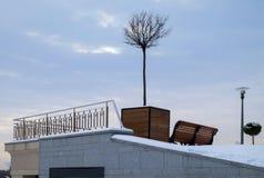 Miniaturbaum im Großen hölzernen Blumentopf als Stadtstraßendekoration in der Winterzeit Lizenzfreie Stockfotos