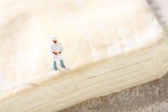 Miniaturchefgebäck D Lizenzfreies Stockfoto