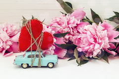 Miniature blue toy car carrying a heart and pink peonies on the Royalty Free Stock Image