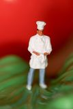 Miniature of a chef Stock Photography