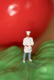 Miniature of a chef Royalty Free Stock Photos