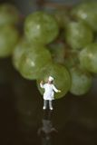 Miniature of a chef with grapes Royalty Free Stock Photography