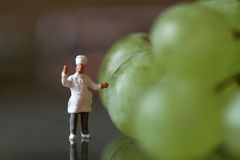 Miniature of a chef with grapes Royalty Free Stock Image