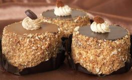 Miniature Chocolate Cakes Stock Photography