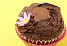 Miniature chocolate cupcake Royalty Free Stock Images