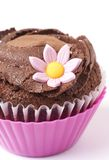 Miniature chocolate cupcake with flower. Miniature chocolate cupcake with icing and pink flower on white background. Macro shot. Shallow depth of field Stock Photos
